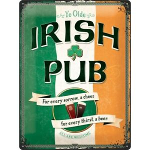 Blechschild 30 X 20 cm Irish Pub