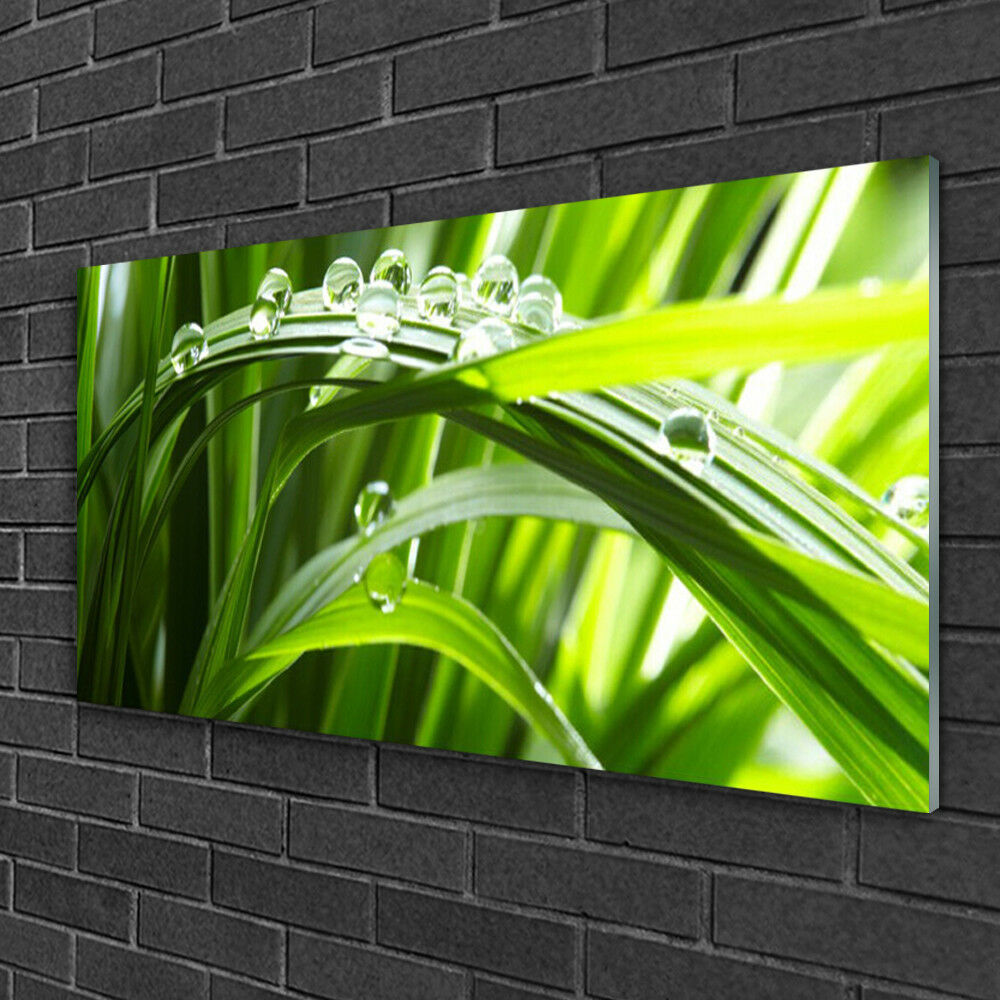 Glass table on 100x50 print image nature grass water drops