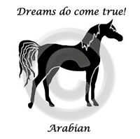 Arabian Arab Horse Dreams Do Come True T-shirt Gold,silver,black