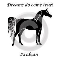 Arabian Arab Horse Dreams Do Come True T-shirt Gold,silver,black