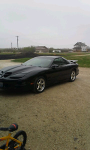 1998 WS6 Firebird T/A TURBO!!! 600whp