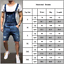 Mens-Overalls-Denim-Jeans-Casual-Ripped-Dungarees-Slim-Fit-Bib-Jumpsuit-Pants thumbnail 3