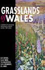 Grasslands of Wales: A Survey of Lowland Species-rich Grasslands, 1987-2004 by Smith Stuart, David Stevens, Tim Blackstock (Hardback, 2010)