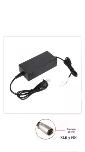 54.6V 2A Small Lithium Battery Power Charger XRL Cannon fr 48V E-bike Electric
