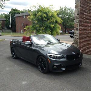2018 BMW Série 2 230i xDrive