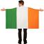 miniatura 1 - San Patricio Día Adulto Capa Irlandés Color Bandera 5ft X 3ft Irlanda Disfraz