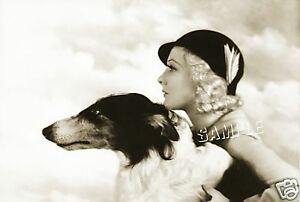Vintage-1930-039-s-LADY-Dog-BORZOI-CANVAS-Photo-Giclee-Art-Print-LARGE-19-034-x-13-034