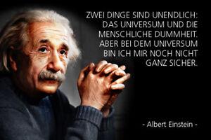 Albert-Einstein-Spruch-12-Blechschild-Schild-gewoelbt-Metal-Tin-Sign-20-x-30-cm