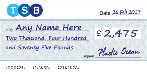 Presentation Fundraising LARGE Personalised TSB BANK Cheque for Charity