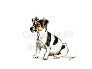 Print-Original-watercolour-amp-ink-art-painting-Jack-Russell-collectible-dog-lover