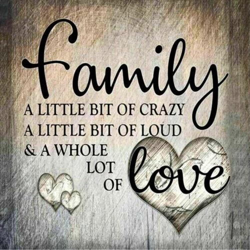 Family Love 5D Diamond Painting Embroidery Cross Craft Stitch Art Home Decor