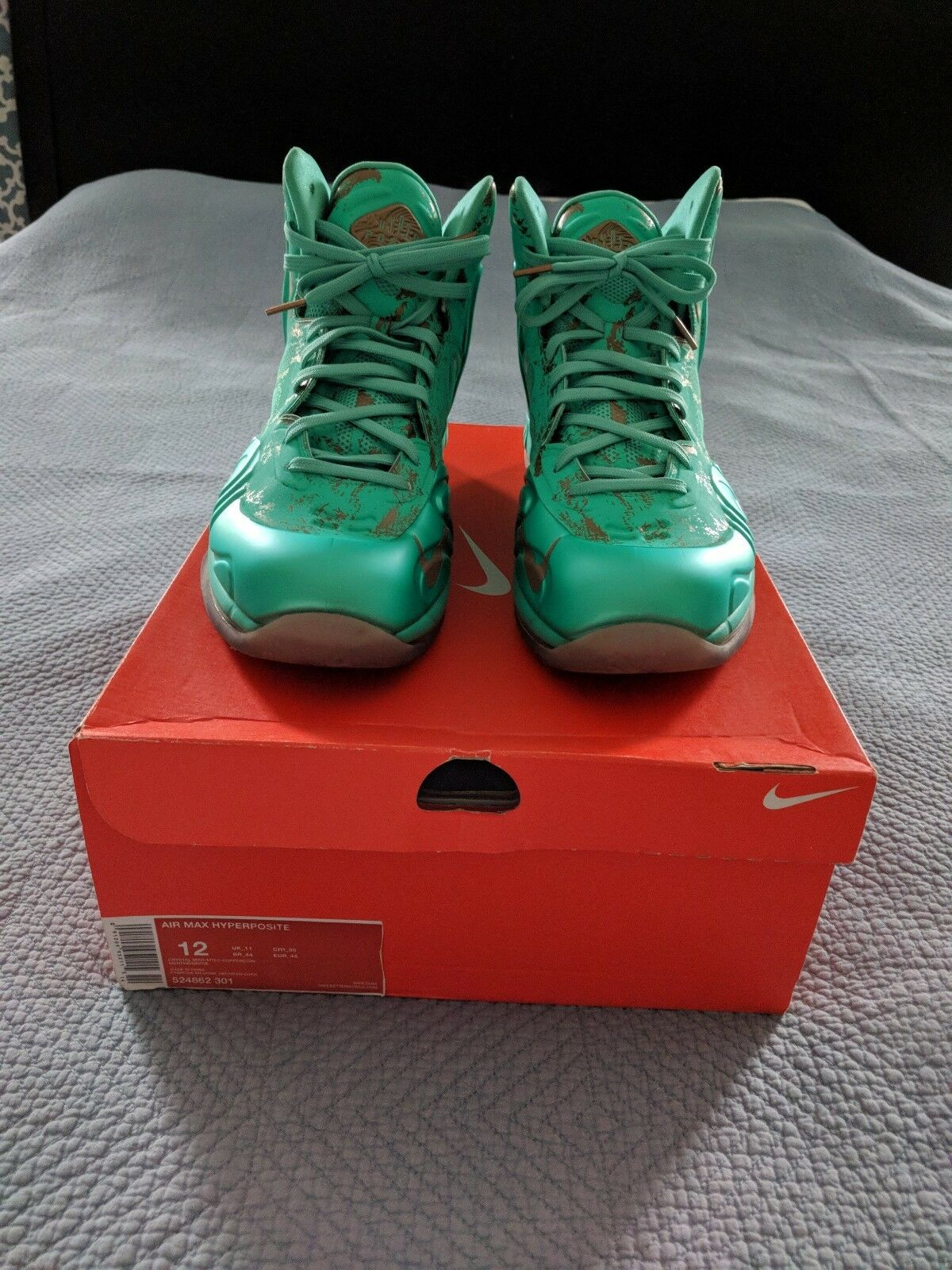 Nike Air Max Hyperposite Statue of Liberty sz 12