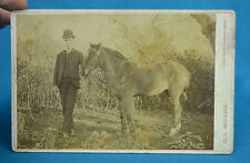 1890s Cabinet Card Young Man In Bowler Hat & Pony Foal Charles Morling Worcester