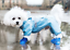 thumbnail 8 - 4Pcs-Protective-Waterproof-Dog-Cat-Rain-Boots-Silicone-Pet-Shoes-Adjustable-Paw