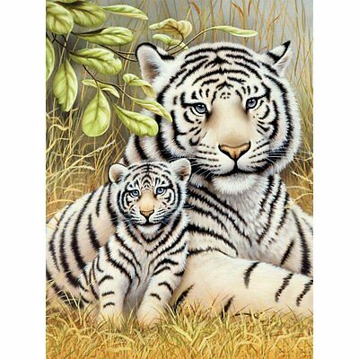 WHITE TIGER PAIR ADULT & CUB  A4 PAINTING PAINT BY NUMBERS & BRUSH PJS76