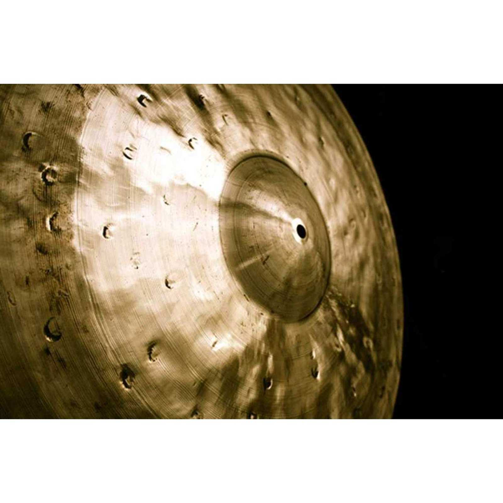 Dream Cymbal Bliss Series Gorilla Ride 22