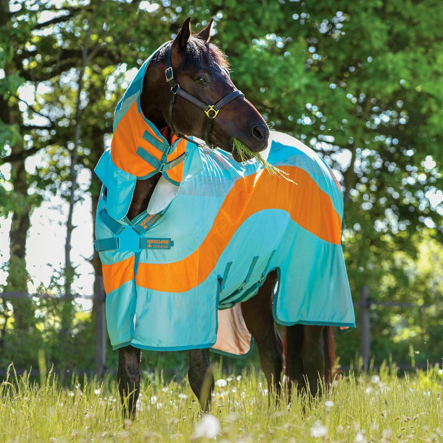 Amigo Evolution Fly Sheet Unisex  Rug Lightweight Mesh Pattern Sea ess  the latest models