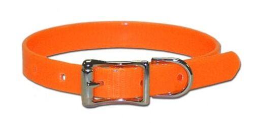 "Dog Collar 12"" Terrier, Puppy, Pet Neon Orange"