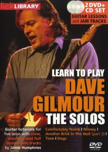 Dave Gilmour Learn To Play The Solos