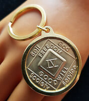 Narcotics Anonymous -na / Aa Gold Plated Medallion Holder For Key Ring Chain