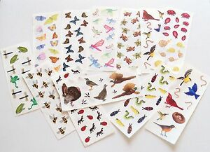 Creeative-Memories-2x5-Studio-Sticker-Strip-U-Choose-Birds-Frogs-Fowl-Insects