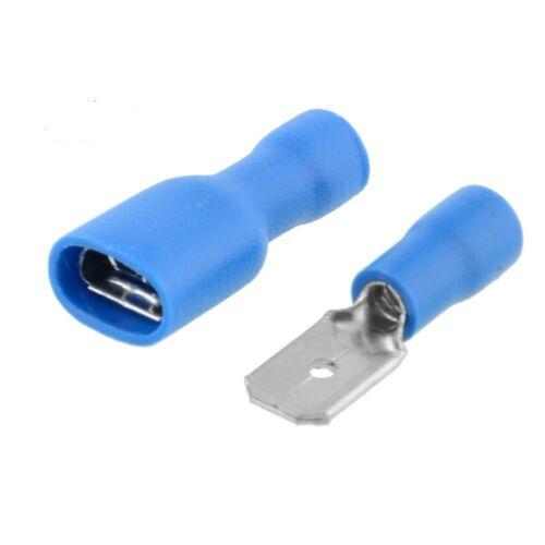 TERMINALE a crimpare maschio Blu Scheda e completamente isolato Spade 4.8mm 50//50 Donna QTY100
