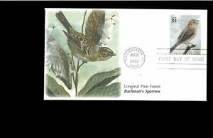 2002-FDC-Longleaf-Pine-Forest-3611a-Sparrow-Tallahassee-FL