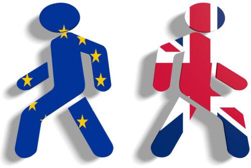 BREXIT Britain UK European Union High Quality T-Shirt Iron On Transfer