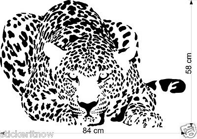 Bonnet Crouching Leopard Decal Sticker Car Free Postage large