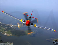 Vintage Military Fighter Plane Poster/p51 Mustang/17x22 Inch/reproduction