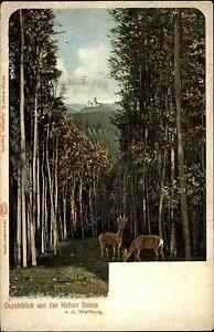 1900-Thueringen-Litho-AK-Durchblick-von-der-Hohen-Sonne-zur-Wartburg-Eisenach