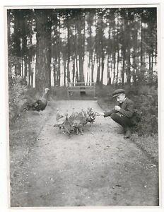7-593-FOTO-TIERZUCHT-UM-1910