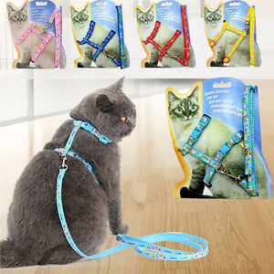 Pet-Cat-Dog-Adjustable-Harness-Collar-Leash-Safety-Walking-Lead-Rope-Chest-Strap