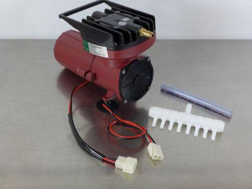 ACO Transportbelüfter 12 V Sauerstoffpumpe Belüfter Teichbelüfter Luftkompressor