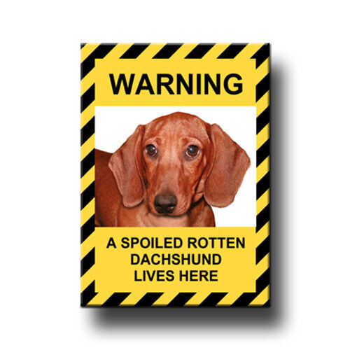 DACHSHUND Spoiled Rotten FRIDGE MAGNET No 5 DOG Puppy