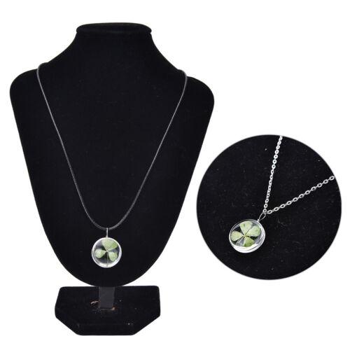 Real Green Lucky Shamrock Four Leaf Clover Round Pendant Necklace FriendsGift YN