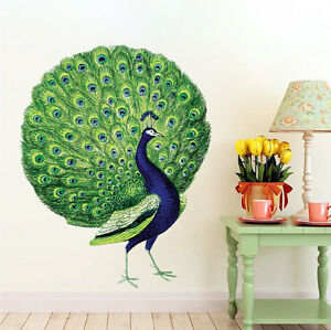 Image Is Loading Peacock Wall Decal Mural Birds Of Paradise Wall