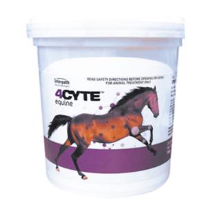 Blaze Equine UV Powder Horse Mineral Sunscreen Sunblock Pink skin Protection