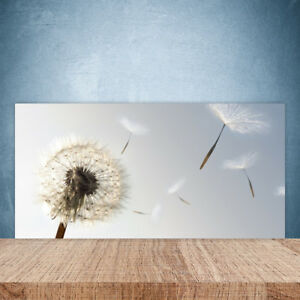 Kuchenruckwand Aus Glas 100x50cm Esg Spritzschutz Pusteblume