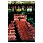 Turtle Pictures by Ray Gonzalez (Paperback, 2000)