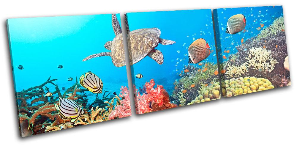 Sea Turtle Fish Animals TREBLE TELA parete arte foto stampa stampa stampa 806d84