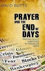 Prayer and the End of Days: Praying God's Purposes in Troubled Times by David Butts (Paperback / softback, 2009)