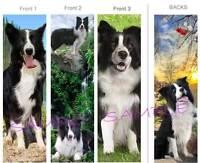 3 Set-border Collie Bookmark Black White Dog Book Mark Card Figurine Art-not Toy
