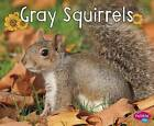 Gray Squirrels by G G Lake (Paperback / softback, 2016)