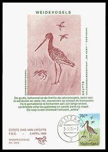 Acheter Pas Cher Pays-bas Mk 1984 Faune Oiseaux Birds Maximum Carte Carte Maximum Card Mc Cm Bv88-afficher Le Titre D'origine