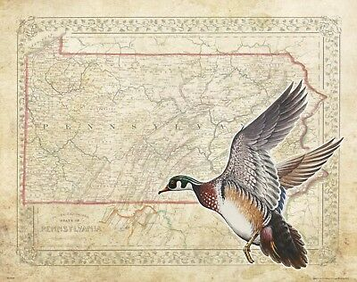 Vintage Wood Duck Hunting Pennsylvania State Map Art Print Calls Decoys DU MAP48