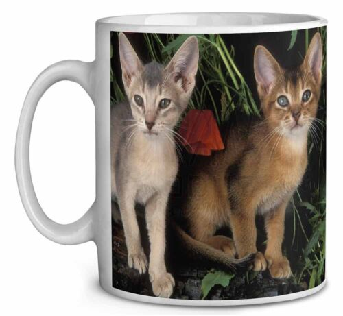 Abyssinian Cats by Poppies Coffee//Tea Mug Christmas Stocking Filler Gif AC-42MG