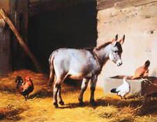 Donkey,  Chickens in Barn by Eugene Verboeckhoven vintage art