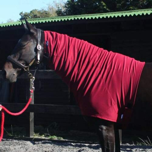 Snuggy Hoods S S//M M Pull On or ZIP rrp ~£54 Headless Turnout Hood