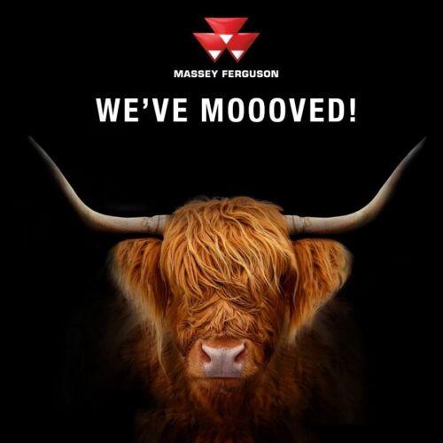 A3 Massey Ferguson Tractor Highland Vaca Toro Ganado FOLLETO Poster
